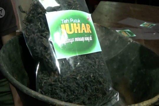 Petani teh tradisional naik kelas