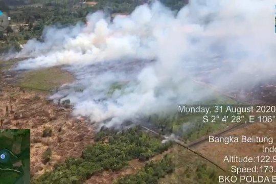 Tim udara Polda Babel temukan titik api di hutan lindung