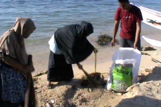 Warga Pulau Kodingareng bersih-bersih pantai jelang HUT RI ke-75