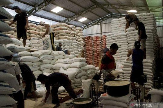 Hingga 2024 Kementan targetkan konsumsi beras turun 7 persen/tahun