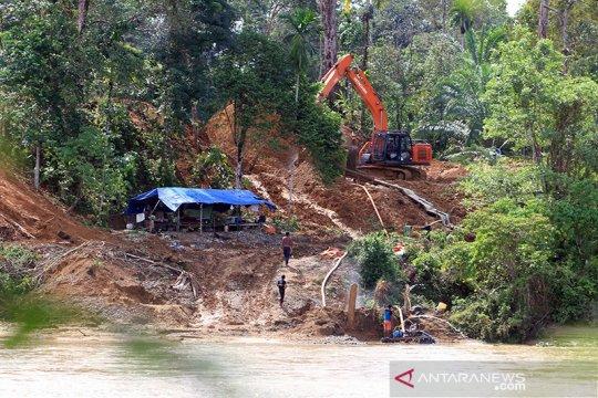 Penambangan emas ilegal di Aceh Barat diduga rambah hutan lindung
