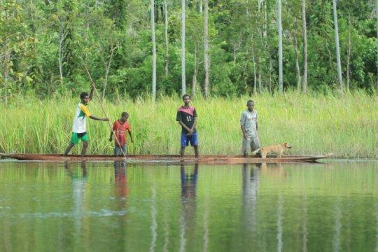 BRG targetkan restorasi 39.239 hektare lahan gambut di Papua