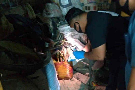 Polisi amankan suami yang diduga kubur jasad istrinya di bawah ranjang