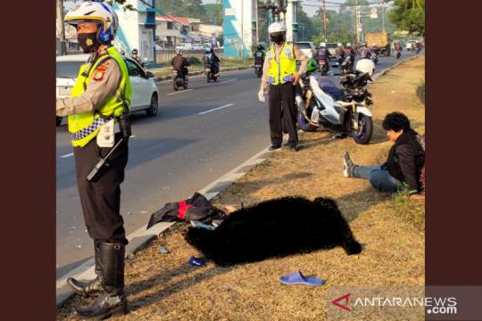 Seberangi Jalan Daan Mogot, seorang pejalan kaki tewas tertabrak motor