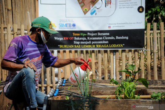Program Kebun Teras Hijau di Bandung