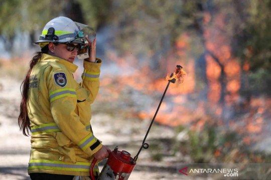 Upaya antipasi kebakaran hutan di Australia