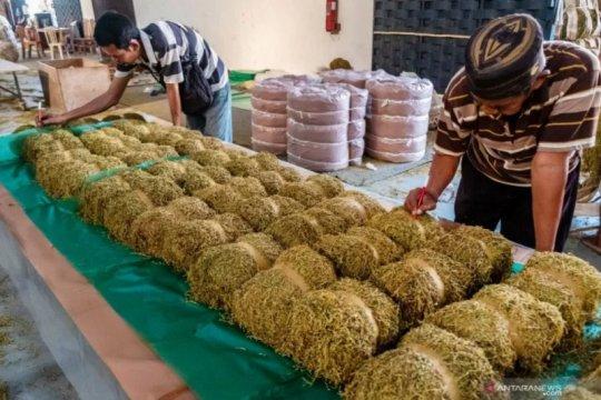 Pukat UGM dorong penyederhanaan struktur tarif cukai tembakau