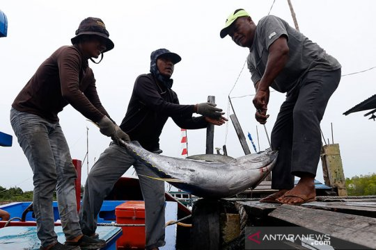 KKP-BNN bersinergi beri alternatif usaha perikanan bagi warga di Aceh