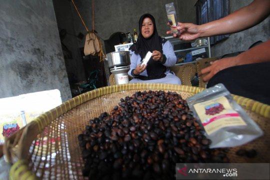 Uniknya kopi mangrove di Indramayu