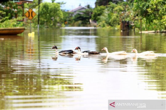 Kapuas Hulu dikepung banjir, masyarakat diminta waspada