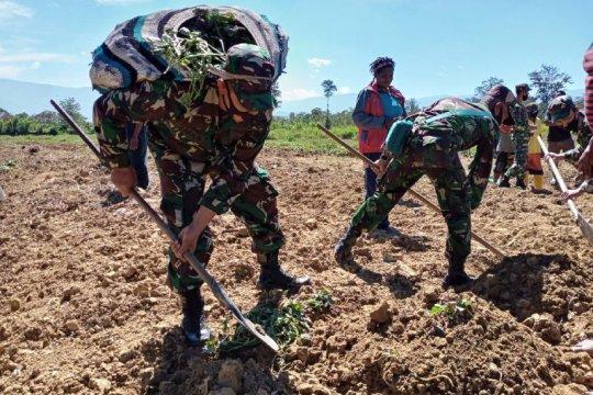Anggota DPR sarankan perkuat Kodim-Koramil di Papua