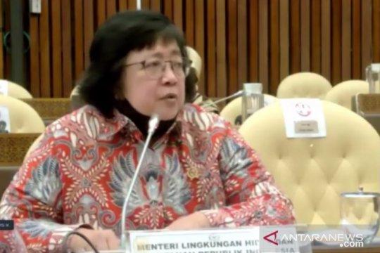 Menteri LHK minta dukungan Komisi IV DPR untuk DAK Lingkungan Hidup