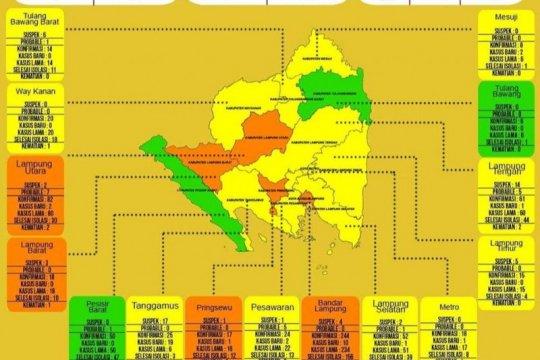 Dinkes : Di Lampung terdapat tambahan 39 kasus COVID-19