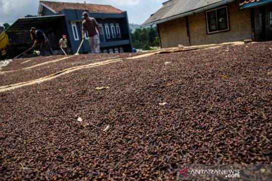 BPS: Ekspor pertanian Maret meningkat dua digit