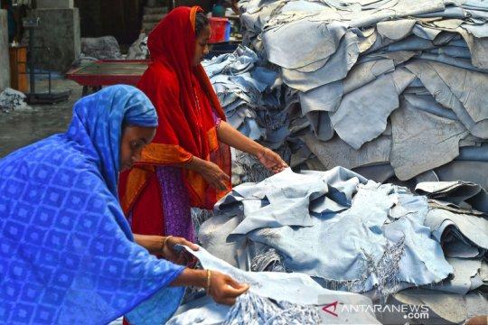 Melihat industri penyamakan kulit di Bangladesh