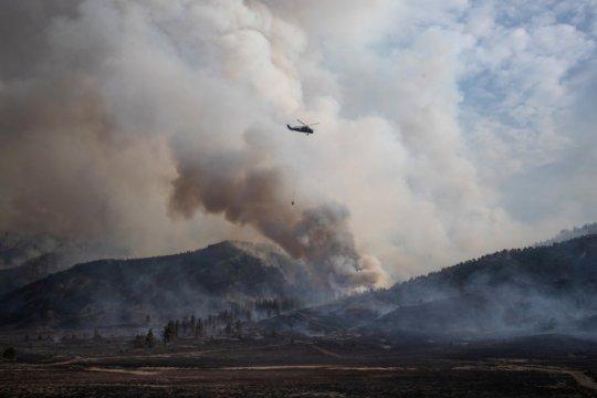 Paraguay umumkan keadaan darurat saat kebakaran hutan berkobar