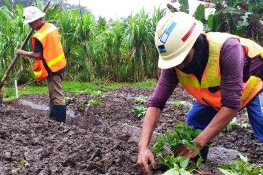 Universitas Papua rampungkan penelitian ekstrak tailing PT Freeport