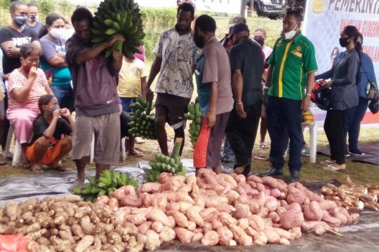 Pengamat nilai UU Cipta Kerja bisa perkuat produksi pangan domestik