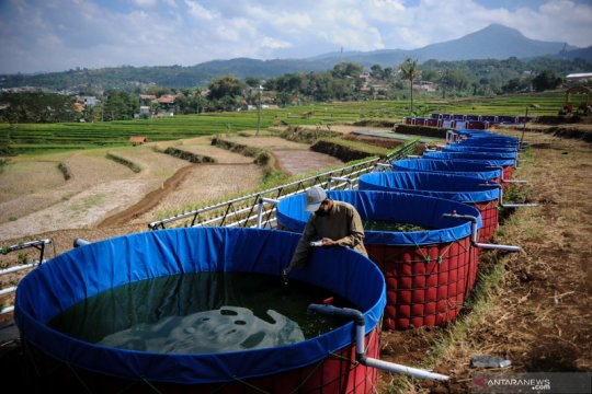 Wisata pertanian terpadu di Bandung