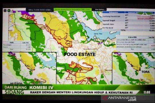 """Menteri KLHK: KLHS """"food estate"""" juga disiapkan di Papua dan Sumsel"""