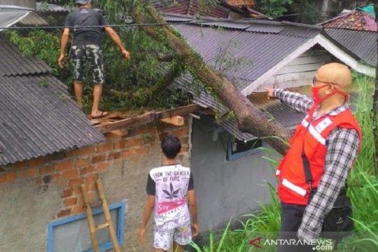 Angin kencang rusak sejumlah rumah dan tumbangkan pohon di Sukabumi