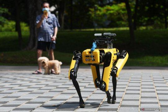 Robot anjing SPOT pendeteksi pemakai masker