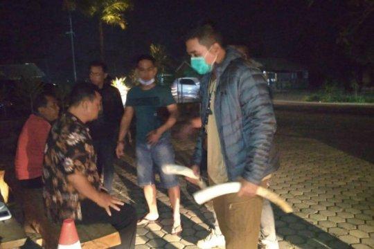 Polda Lampung dan Tim TNBBS tangkap pelaku penjualan gading