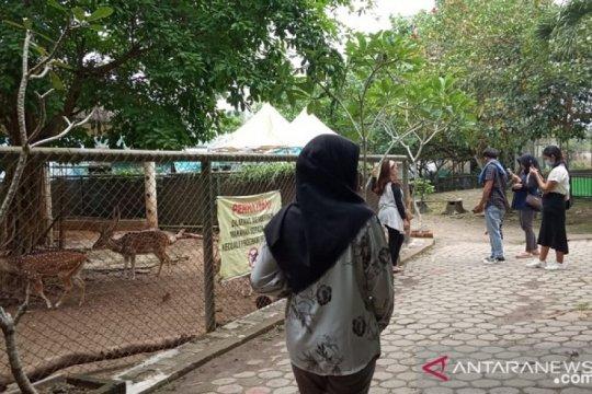 Pengunjung Kebun Binatang Rimba Pall Merah Jambi turun 75 persen