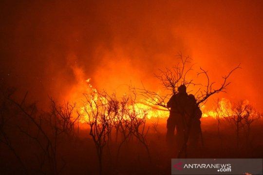 Kebakaran di Argentina