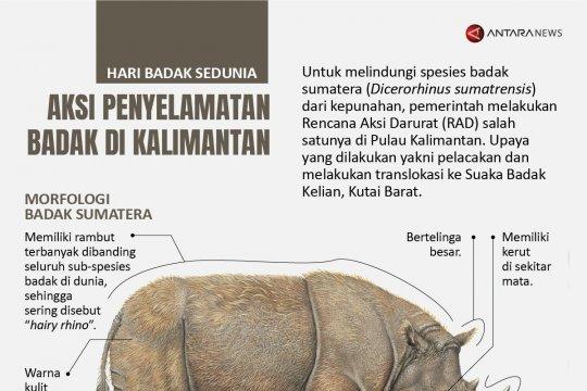 Aksi penyelamatan badak di Kalimantan