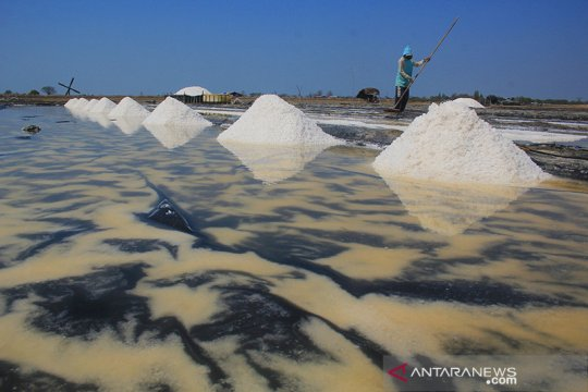 Agro Jabar siap serap produksi garam petani lokal