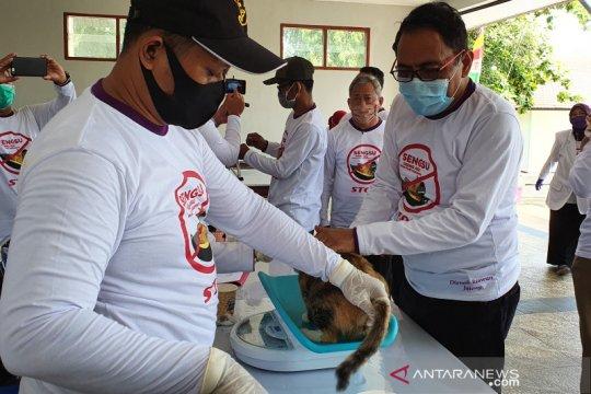 Jawa Tengah sediakan 8.000 vaksin antisipasi rabies