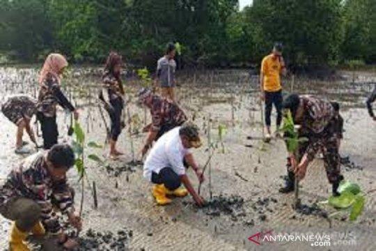 BPDASHL padat karya penanaman mangrove 11 kabupaten di Sultra
