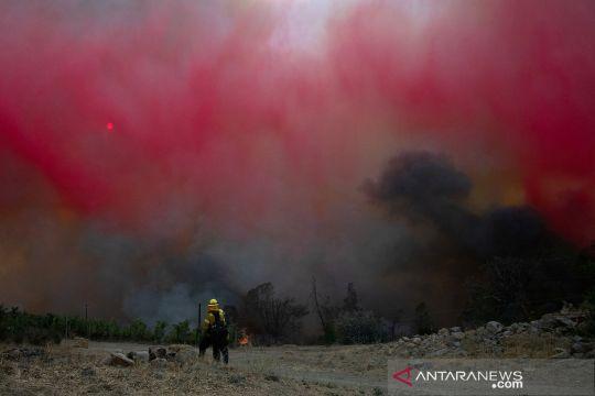 Kebakaran hutan dan lahan di California