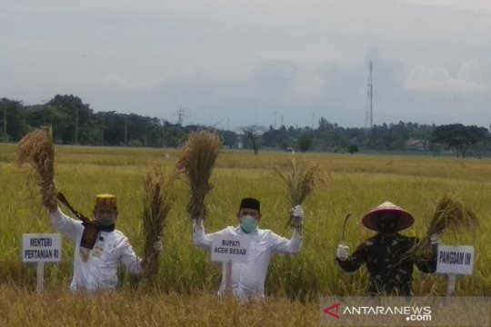 Mentan minta Aceh optimalkan sektor pertanian