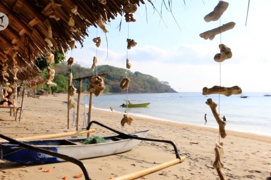 Pemprov NTB kembangkan kawasan hijau destinasi wisata