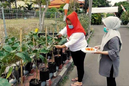 Mewujudkan ketahanan & kedaulatan pangan dengan pertanian urban