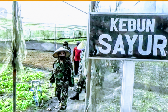Pangkoopsau I: kebutuhan pangan tak dapat dicegah