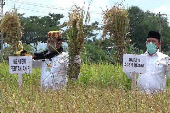 Mentan minta Acehsiap jadi penyokong ekonomi dari sektor pertanian
