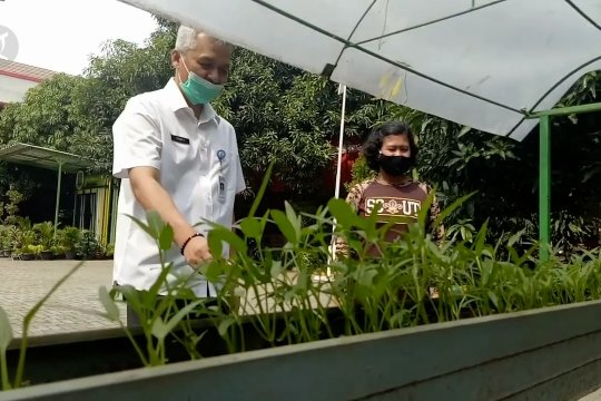 Dinas Pendidikan Kota Tangerang libatkan sekolah bantu ketahanan pangan