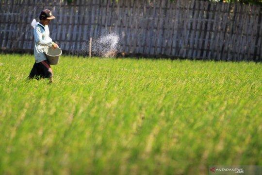 DPR: Petani tidak boleh terus menerus bergantung pada pupuk kimia