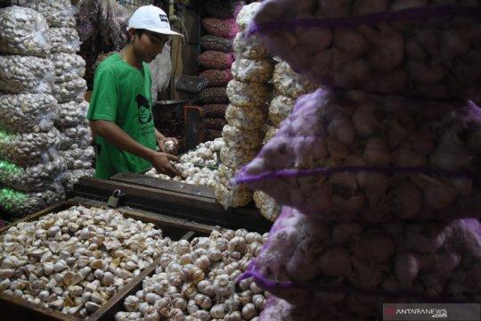 Peneliti sebut perlu pengusutan soal lamanya izin impor bawang putih