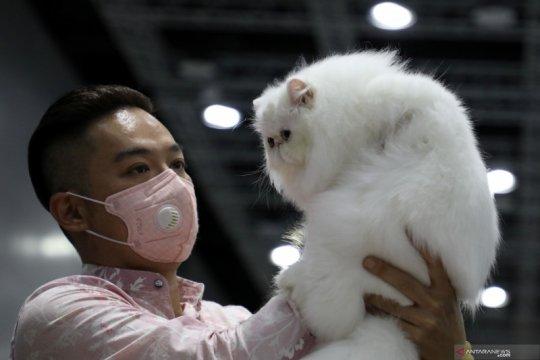 Cat Expo di Kuala Lumpur
