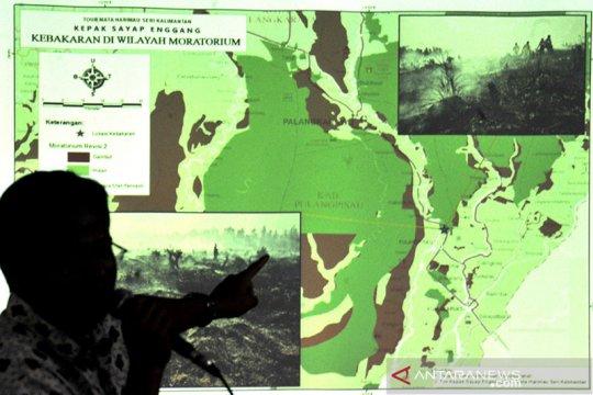 Pandemi COVID-19 momen pulihkan ekonomi nasional yang prolingkungan