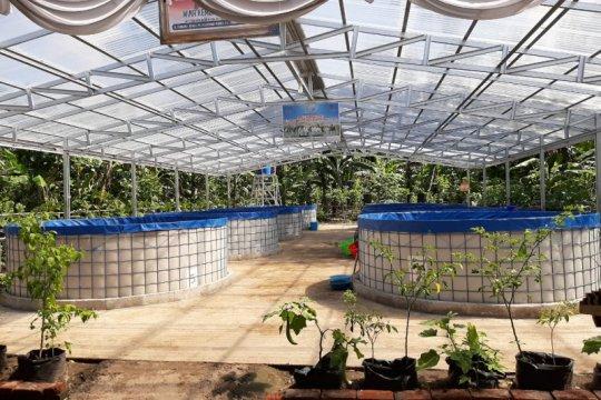 Anggota DPR sebut sistem bioflok bantu ekonomi sektor perikanan