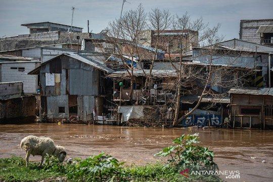 DKI pilih-pilih dalam gusur warga bantaran kali untuk atasi banjir