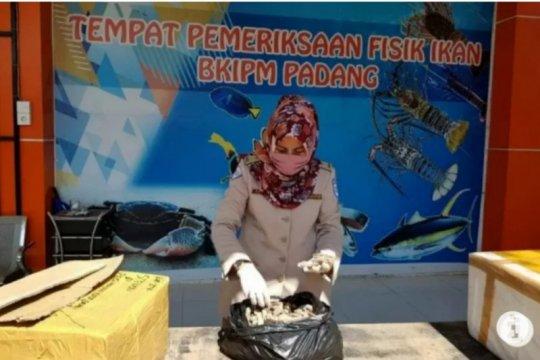 SKIPM catat ekspor hasil perikanan dari Sumbar naik pada September