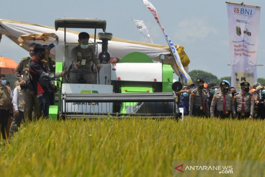 Mentan panen raya padi di Lampung Tengah