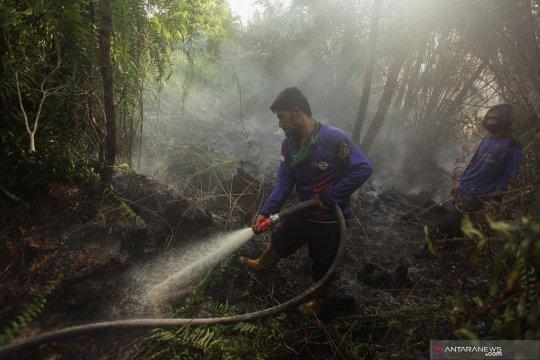 Kalimantan Tengah berupaya meminimalkan risiko kebakaran hutan-lahan