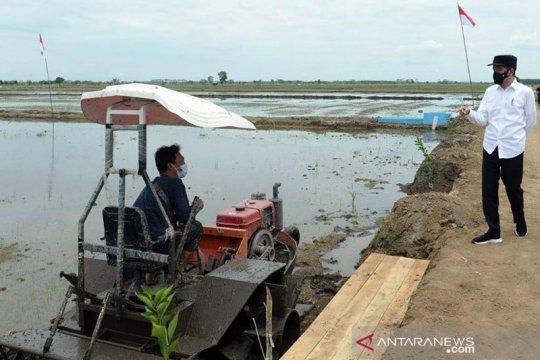 """Presiden Jokowi apresiasi penggunaan drone di """"food estate"""" Kalteng"""